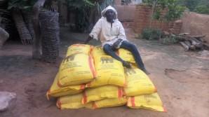 Amadou sur le riz